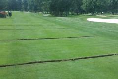 Irrigation-Drainage3